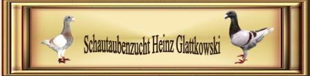 Banner Heinz302